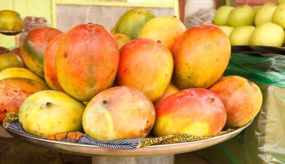 Afrikanische Mango